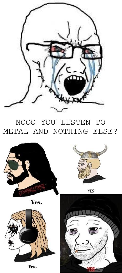 Metal has it all - meme