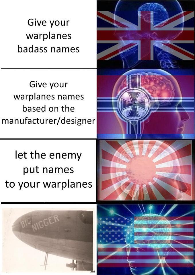 dongs in a plane - meme