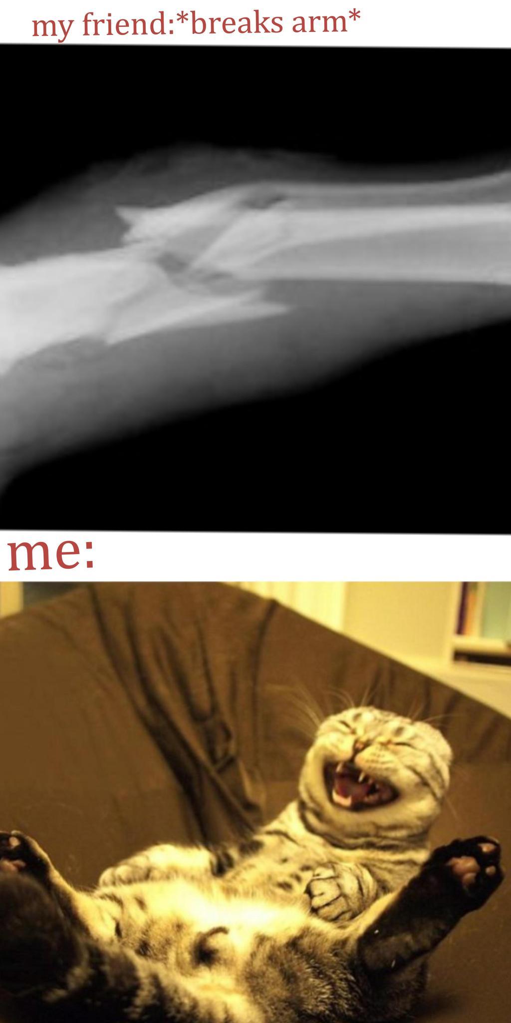 everything I'm my life - meme