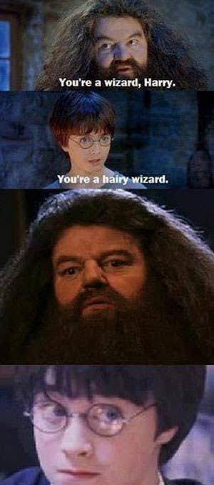 the hairy wiz - meme