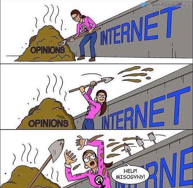 Feminism in a nutshell - meme