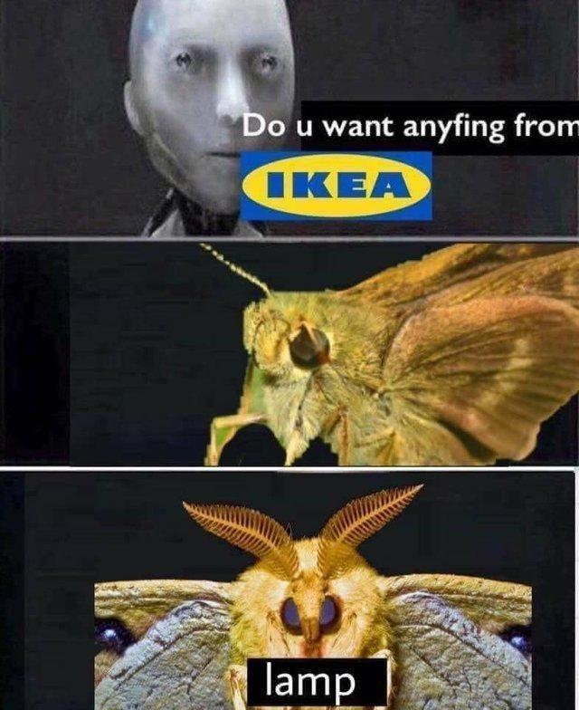 lamps - meme