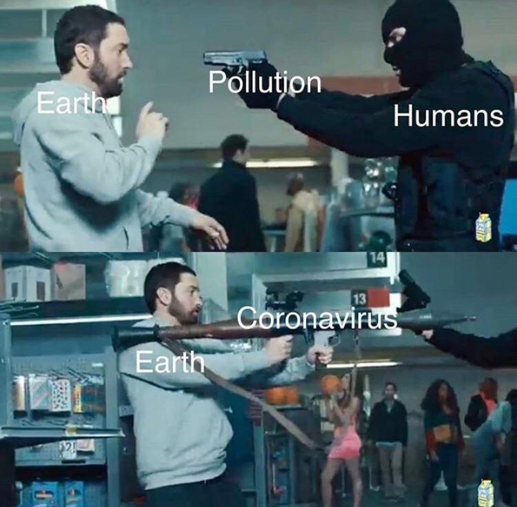 Covidiot - meme