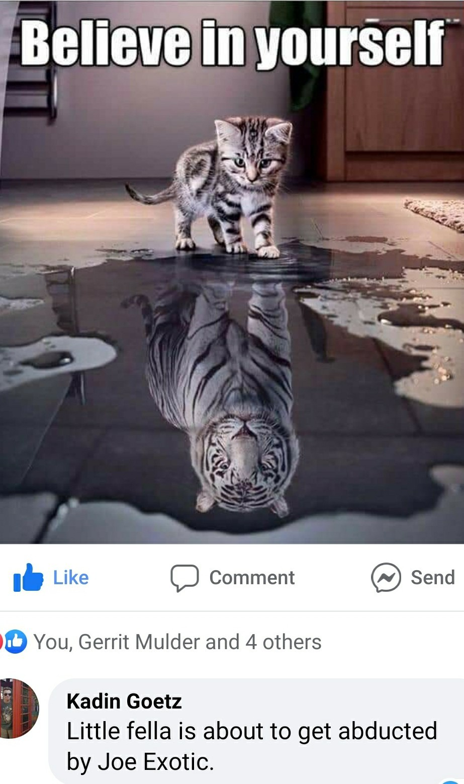 Tiger King - meme