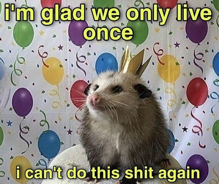 me too birthday possum - meme