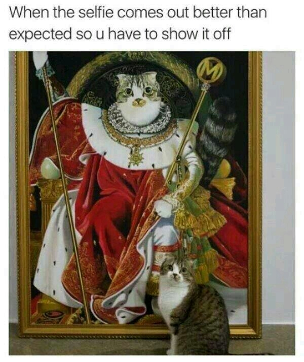 Fire selfie skills - meme