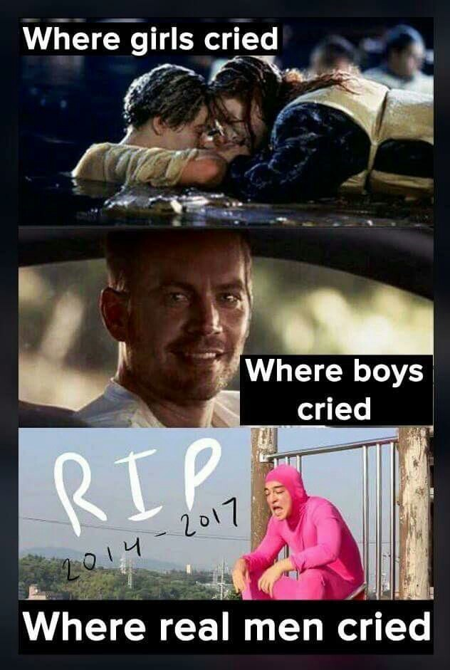 R.I.P. My Hero - meme