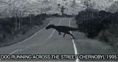 I LOVE TCHERNOBYL - meme