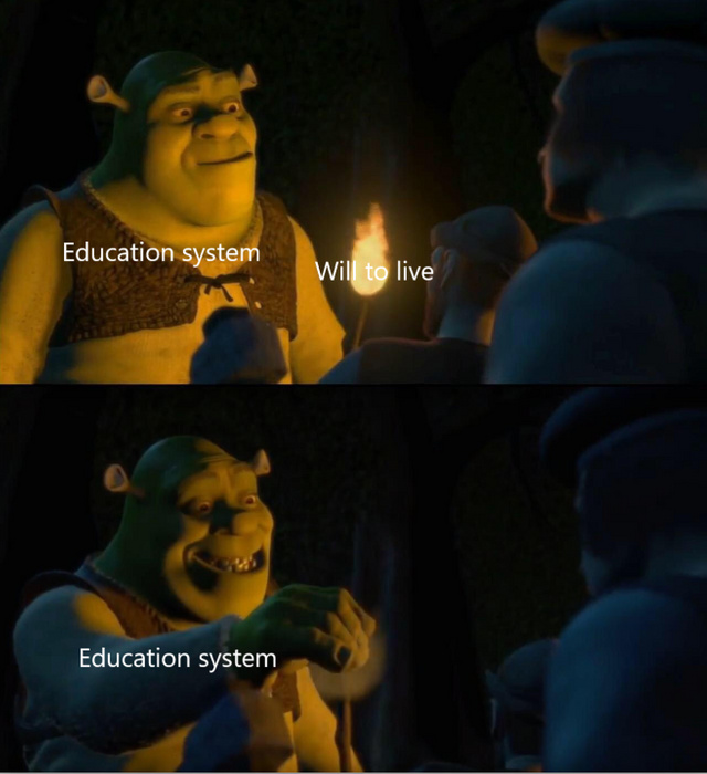 Education system kills our will to live - meme