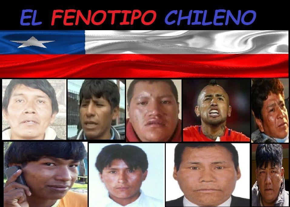 chilenos guapos uwu - meme