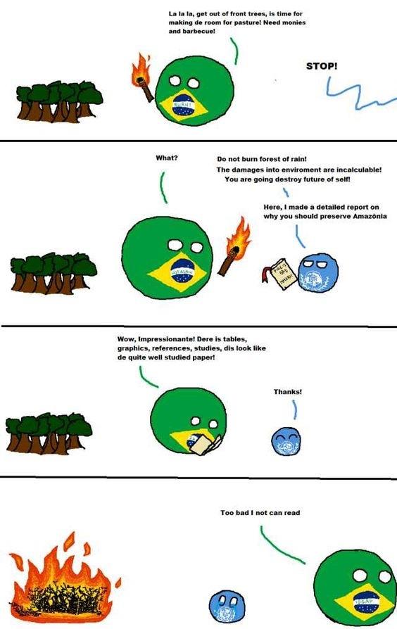 Brazil forest burning - meme