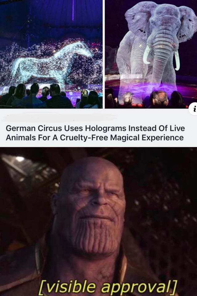 German circus uses holograms instead of live animals for a cruelty-free magical experience - meme