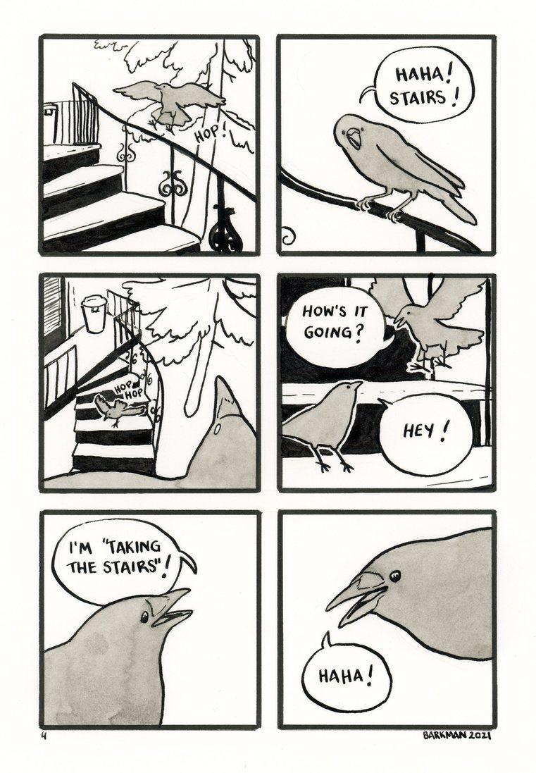 I love crows - meme