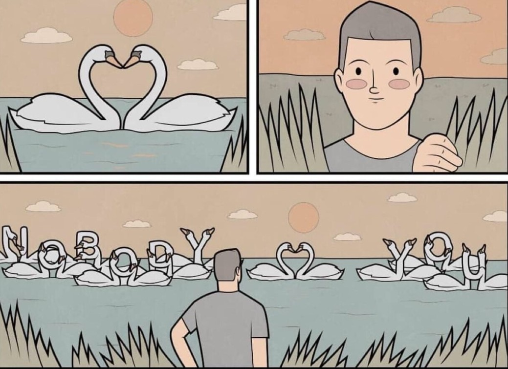 Rude duck swan doggo things - meme