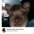When you bark but she doesn't bark back
