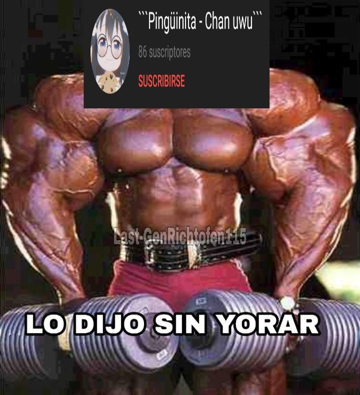 LO DIJO SIN YORAR - meme