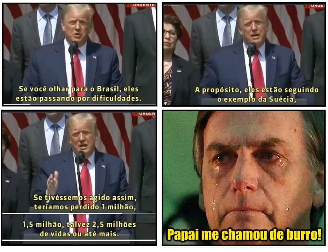 Bolsonaro o mais estúpido do universo - meme