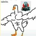 Pato mamadisimo