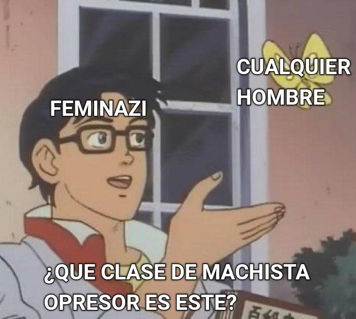 Feminismo - meme