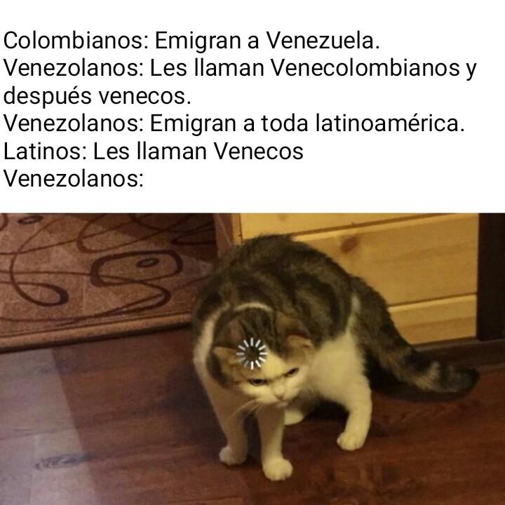 Origen de la palabra veneco - meme