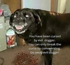 Evil dogger - meme