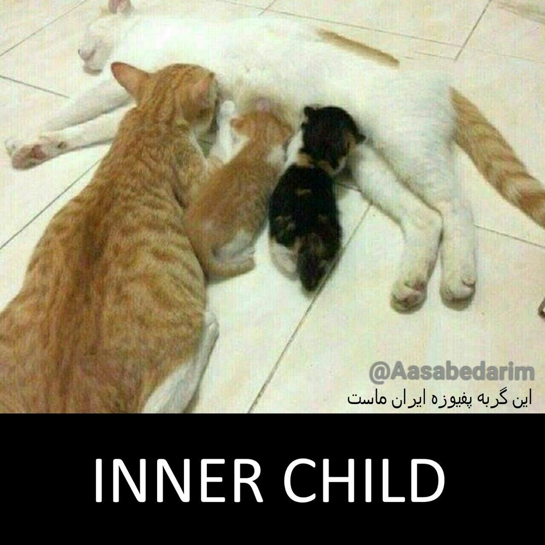 Inner Child - meme