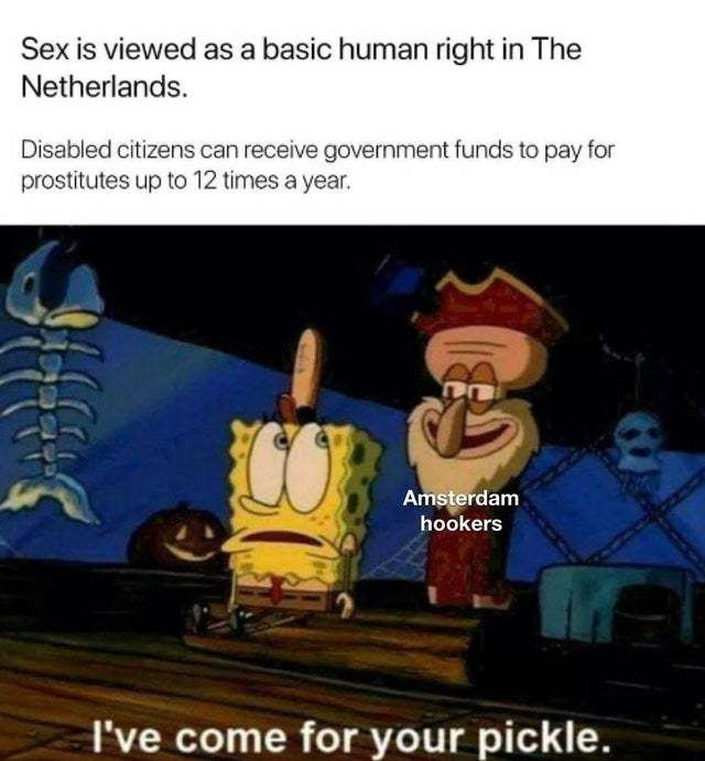 Sex is viewed as a basic human right in The Netherlands - meme