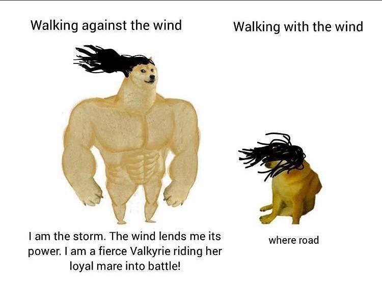 long hair troubles - meme
