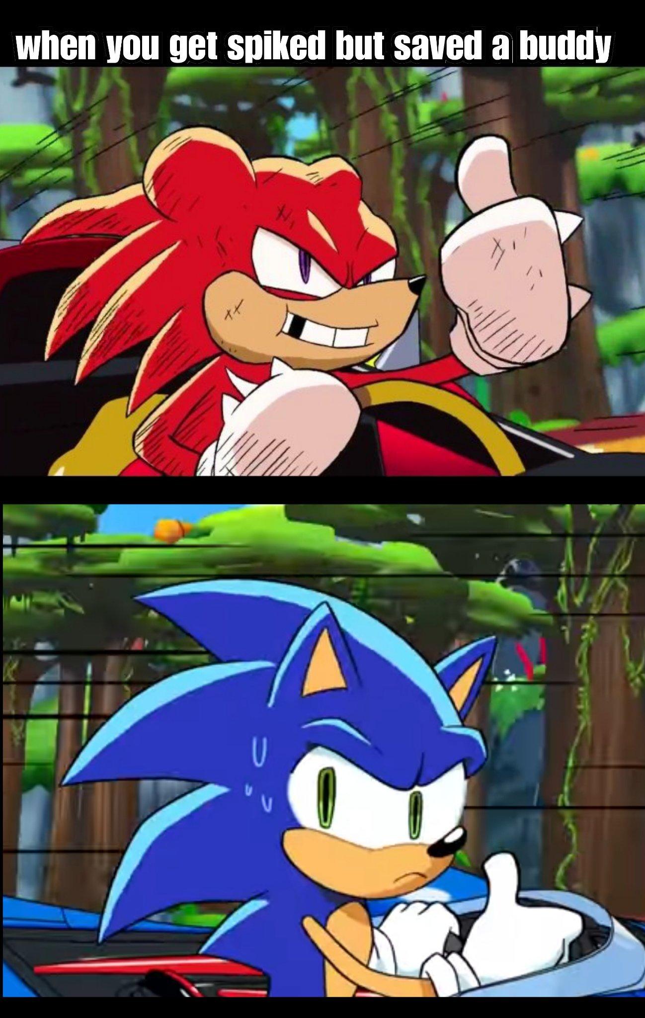 Sonic racing - meme